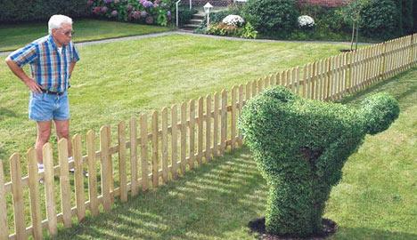 Neighbour fight or fun